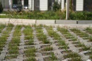 Паркинг елемент Тревна решетка